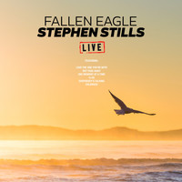 Stephen Stills - Fallen Eagle (Live)