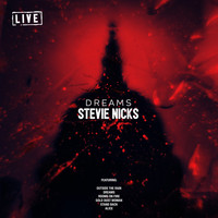 Stevie Nicks - Dreams (Live)