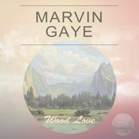 Marvin Gaye - Wood Love