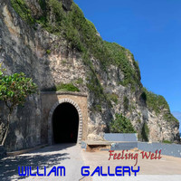 William Gallery - Feeling Well