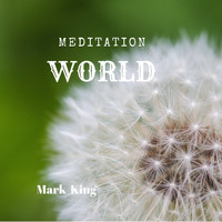 Mark King - Meditation World