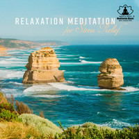 Mindfulness Meditation Music Spa Maestro - Relaxation Meditation for Stress Relief - Yoga Exercises, Sleep Night Music, Reiki Zen Spa, Study, Mindfulness & Nature Sounds