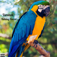 Vershon - Talking Parrot (Explicit)