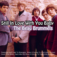 The Beau Brummels - Still In Love With You Baby