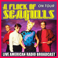 A Flock Of Seagulls - A Flock of Seagulls on Tour (Live)