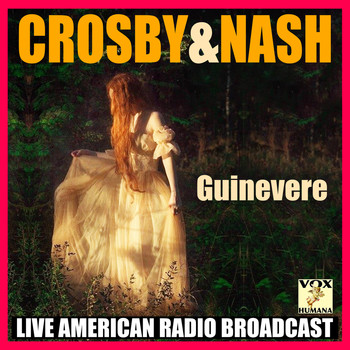 Crosby & Nash - Guinevere (Live)