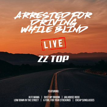 ZZ Top - Arrested For Driving While Blind (Live)