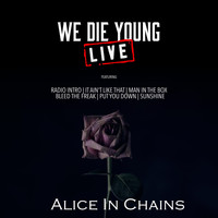 Alice In Chains - We Die Young (Live)