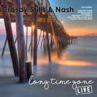 Crosby, Stills & Nash - Long Time Gone (Live)