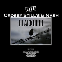Crosby, Stills & Nash - Blackbird (Live)