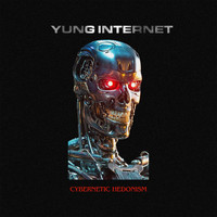 Yung Internet - Cybernetic Hedonism
