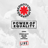 Red Hot Chili Peppers - Power of Equality (Live)