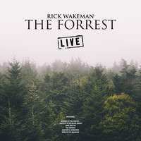Rick Wakeman - The Forrest (Live)
