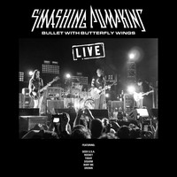 Smashing Pumpkins - Bullet with Butterfly Wings (Live [Explicit])
