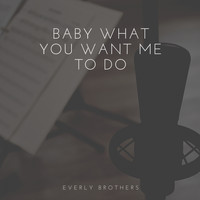 Everly Brothers - Baby What You Want Me to Do