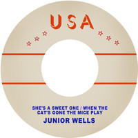 Junior Wells - She's a Sweet One / When the Cat's Gone the Mice Play