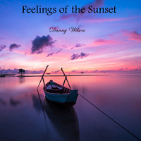 Danny Wilson - Feelings of the Sunset