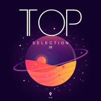 Various Artists, Array - TOP Selection IX