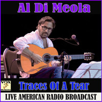 Al Di Meola - Traces Of A Tear