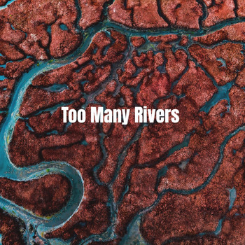 Various Artists - Too Many Rivers