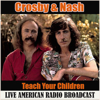Crosby & Nash - Teach Your Children (Live)