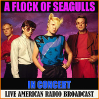 A Flock Of Seagulls - A Flock of Seagulls in Concert (Live)