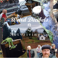 Weird Decibels - Not Giving Up