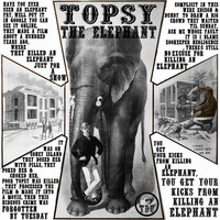 Time Dilation Unit - Topsy the Elephant