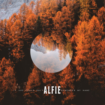 Alfie - If She Could Only Remember My Name (Explicit)