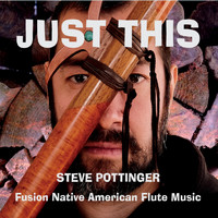 Steve Pottinger - Just This