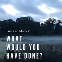 Adam Melvin / - What Would You Have Done?