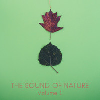 Nature Sounds, Nature Sounds Artists, Nature Sounds Nature Music - The Sound of Nature, Vol. 1