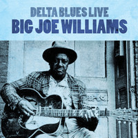 Big Joe Williams - Delta Blues Live