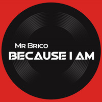 Mr Brico / - Because I Am