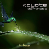 Koyote - Darkness