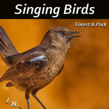 John Nature - Singing Birds - Forest & Park
