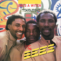 The Bees - She's a Witch (Tikoloshi)