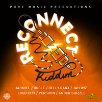 Various Artists - Reconnect Riddim