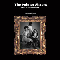 The Pointer Sisters - Feels like June