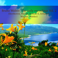 Bruno Walter - Bruno Walter: The early recordings Vol. 2 (Beethoven, Haydn, Strauss II, Schubert, Wagner, Mahler)