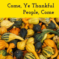 Matt Johnson - Come, Ye Thankful People, Come