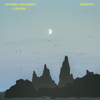 Invisible Movement & Zenter - Moments