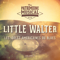 Little Walter - Les idoles américaines du blues : Little Walter, Vol. 1