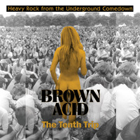Various Artists / - Brown Acid - The Tenth Trip