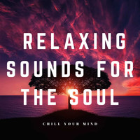 Relaxing Sounds For The Soul / - Chill Your Mind