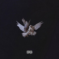 AM - Fly Away (Explicit)