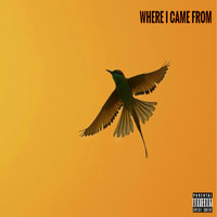 AM - Where I Came From (Explicit)
