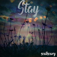 scallscary / - Stay