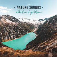 Healing Yoga Meditation Music Consort - Nature Sounds with New Age Music: Calming Yoga, Spiritual Meditation, Sleep, Chakra Balance, Reiki & Deep Relaxation