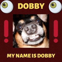 Andy Garrett - Dobby - My Name Is Dobby
